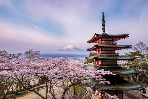 Nhật Bản: Ngôi đền của công viên Arakurayama Sengen trong thành phố Fujiyoshida bên cạnh ngọn núi Phú Sĩ tuyệt đẹp trong mùa hoa anh đào nở rộ. Ở đây, mùa hoa anh đào sẽ đến vào tháng ba hàng năm, khiến khắp nẻo đường được phủ một màu hồng thơ mộng.